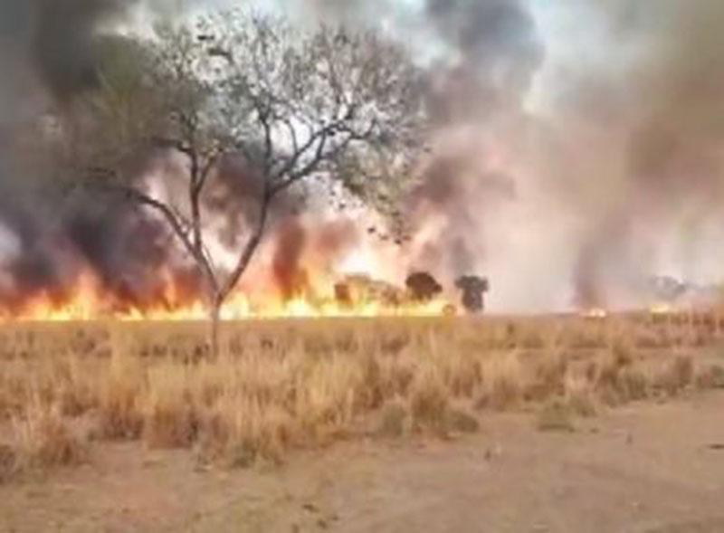 Bahia registra 85 focos de incêndio nesta quarta; Cotegipe lidera queimadas